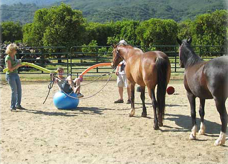 equine-assisted-psychotherapy-ojai