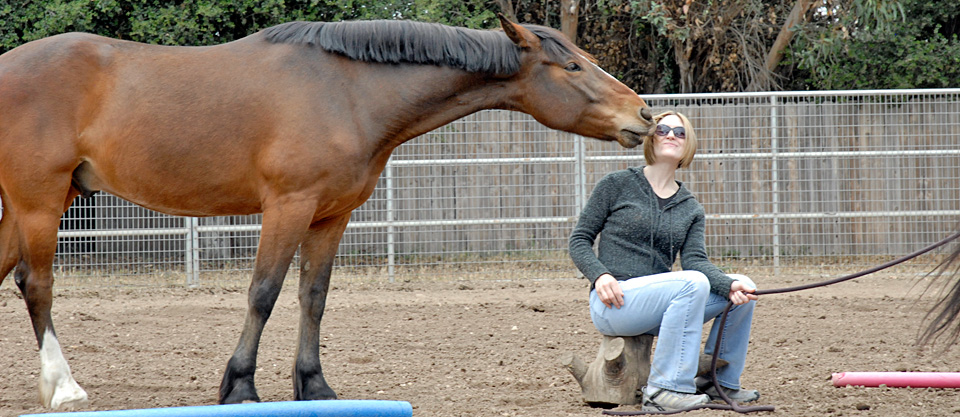 equine-assisted-pyschotherapy